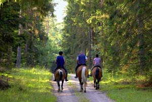 horseback riding tremblant, activities in Mont Tremblant