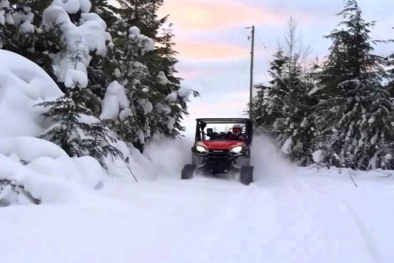 Tremblant buggy